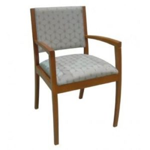 Speer Wood Arm Chair