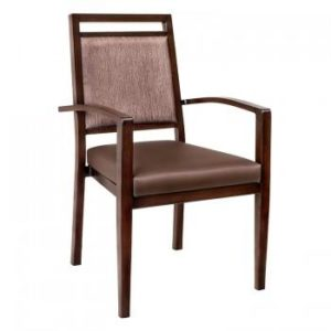 Hyssop 22 Metal Arm Chair