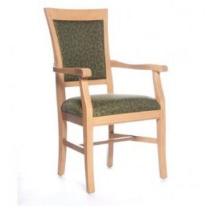 Holden Wood Arm Chair