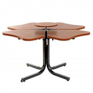 Four Person Adjustable Table