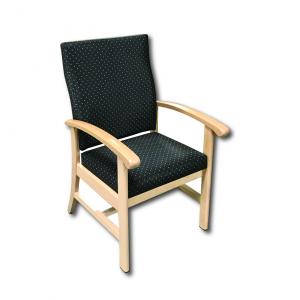 Escape Senior LIving Arm Chair