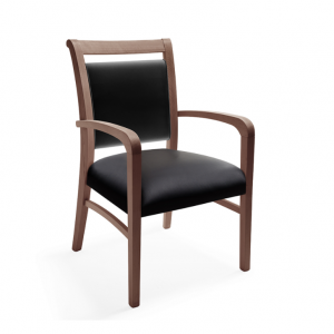 Greer Healthcare Dining Chair
